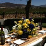 table set2